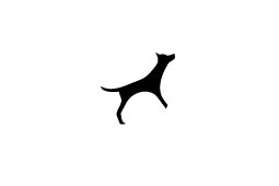 Leben mit einem blinden Hund